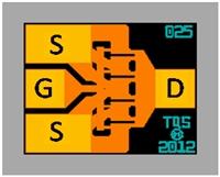 TGF2025 Image